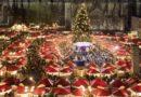 Pubblicato il Bando per gli eventi del Natale 2019 di Latina